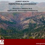 forest health presentation cover
