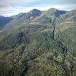 tongass roadless