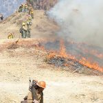 Firefighters working to contain the 2016 Soberanes Fire in Los Padres National Forest in California. U.S. Forest Service -- Los Padres National Forest/Facebook