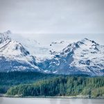 tongass dds